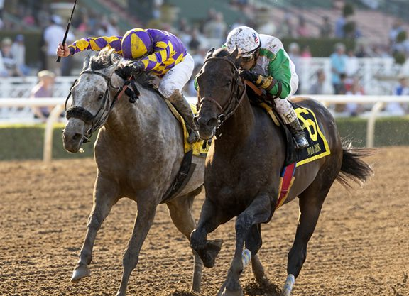 A 'Wild' Finish to the Santa Anita Sprint Championship
