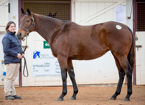 'Blue' Tops Day 1 of Goffs