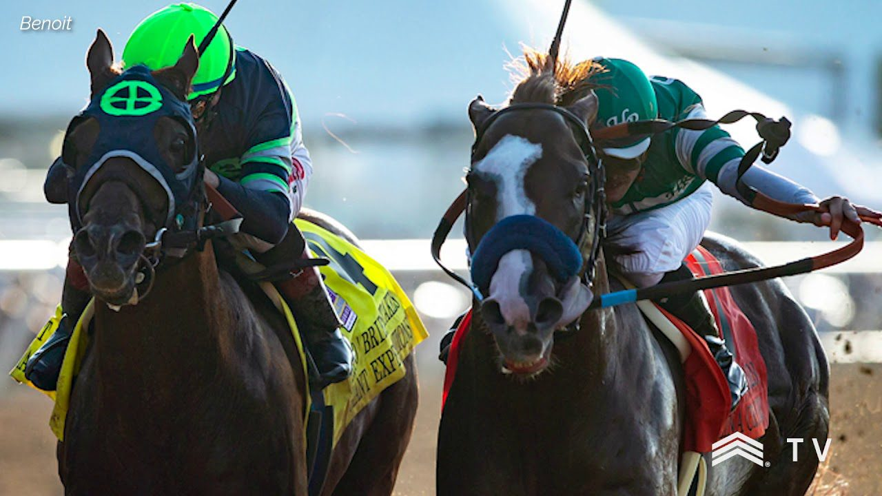 Catalina Cruiser, by Union Rags, Wins the Pat O'Brien